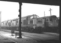Inside looking out. Class 37 no 6839 together with what is thought to be 6856 standing alongside a class 27 in the yard at Polmadie MPD on 14 February 1970.<br><br>[Bill Jamieson&nbsp;14/02/1970]