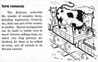 <I>Farm removals!</I> Service advertised in a 1960 BR (SR) timetable. [One cow seems quite happy with the service but the one behind looks less than pleased!]<br><br>[Colin Miller&nbsp;//1960]
