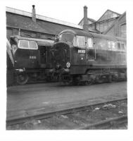 North British built diesel hydraulics D6303 and Warship D835 <I>Pegasus</I> standing together outside Swindon Works on 6 May 1961.<br><br>[David Pesterfield&nbsp;06/05/1961]