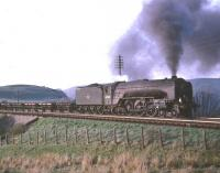 A2 Pacific no 60530 <I>Sayajirao</I> passing Stobs camp with a freight, thought to have been taken in June 1966 with the A2 standing in for a failed diesel locomotive.<br><br>[Robin Barbour Collection (Courtesy Bruce McCartney)&nbsp;/06/1966]