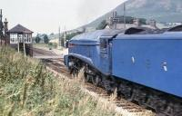 A4 Pacific no 4498 <I>Sir Nigel Gresley</I> heading north for Ravenglass at the small station of Silecroft on the Cumbrian coast in the summer of 1978. The signalbox and  semaphores protecting the level crossing here remain in use to this day.<br><br>[David Hindle&nbsp;23/08/1978]