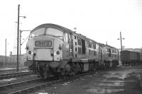 Class 29s, D6137 and 6130, photographed on Eastfield shed in February 1970. At that time I was acquainted with a number of railway enthusiasts from Grangemouth who referred to them as 'Dugs'. From this angle there is a certain bulldog quality about them. <br><br>[Bill Jamieson&nbsp;14/02/1970]