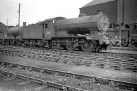 Class J38 0-6-0 no 65918 stands in the shed yard at Seafield in February 1960.<br><br>[Robin Barbour Collection (Courtesy Bruce McCartney)&nbsp;07/02/1960]