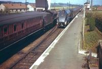 60031 <I>Golden Plover</I> runs through Drem with a down ECML express in 1958 passing a stopping train at the up platform. <br><br>[A Snapper (Courtesy Bruce McCartney)&nbsp;//1958]