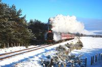 In freezing conditions and leaking a little steam, Caledonian Railway 0-6-0 no 828 pictured just south of Broomhill on its way back to Aviemore with the 'Santa Express' on Christmas Eve 2010. <br><br>[John Gray&nbsp;24/12/2010]
