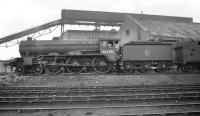 Gresley B17 4-6-0 no 61658 <I>The Essex Regiment</I> standing in front of the unique coaling plant at Stratford shed in the late 1950s. The ramp in the background is carrying coal on a conveyor belt from a large underground storage facility (fed by wagons via rotary tippler) up to the 800 ton capacity reinforced concrete storage bunkers. The bunkers were fitted with 8 discharge chutes on either side allowing up to 7 locomotives (dependent on size) to be coaled at any one time. The coaling plant, brought into use in 1922, required 12 men to operate it - compared with the 32 previously deployed on coaling activities at Britain's largest shed.<br> <br><br>[K A Gray&nbsp;//]