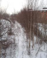 <I>Slumbering under the snow</I>. Tracks of the erstwhile Longridge branch, unused now for nearly twenty years, can just be seen beneath the Boxing Day snow and the Silver Birch trees. This view looks towards the now severed junction with the main line [See image 23275] and also shows the student accommodation built on the site of Maudlands Goods Yard.<br><br>[Mark Bartlett&nbsp;26/12/2010]