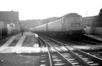 The 8.50am St Pancras - Edinburgh Waverley train (3.58pm ex-Carlisle) calls at Newcastleton on 28 December 1968. The locomotive in charge is Brush Type 4 no 1536 and the headcode should read 1S65. [See image 26129]<br><br>[Robin Barbour Collection (Courtesy Bruce McCartney)&nbsp;28/12/1968]