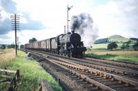 Carlisle Kingmoor's <I>Crab</I> 2-6-0 no 42905 is heading for home with an up freight on the WCML approaching Symington station on the first day of August 1959.<br><br>[A Snapper (Courtesy Bruce McCartney)&nbsp;01/08/1959]