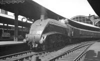 60022 <I>Mallard</I> at Newcastle Central with the <I>'Anglo-Scottish Car Carrier'</I> in the summer of 1960.<br><br>[K A Gray&nbsp;25/06/1960]