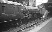 61333 with a train at Glasgow's High Street Station in July 1961. The B1 was one of a number of steam locomotives pressed back into suburban service, along with miscellaneous coaching stock, following the withdrawal of Glasgow's 'Blue Train' electric units between December 1960 and October 1961 for emergency safety modifications. Built a short distance from here by the North British Locomotive Company in 1948, no 61333 was a Parkhead engine at that time.  The B1 was eventually withdrawn from 65C at the end of 1962 and cut up at Cowlairs the following July, shortly following its 15th birthday.    <br> <br><br>[K A Gray&nbsp;03/07/1961]