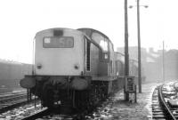 A misty Motherwell shed on 11 January 1971, with snow on the ground, hosting a trio of Clayton locomotives. The individuals concerned are (front to rear) 8502, 8568 and 8538. All 3 examples were withdrawn in October that year. After being purchased for private industrial use 8568 was later preserved. [See image 22649]   <br><br>[John Furnevel&nbsp;11/01/1971]