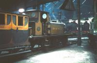 Inside the roundhouse at Tweedmouth on 6 June 1959. In store at the time were three locomotives belonging to the National Collection. Seen here is LBSCR Terrier 0-6-0T no 82 Boxhill, while nearby were SE&CR D class 4-4-0 no 31737 and LSWR T3 4-4-0 no 563. The locomotives spent approximately a year here from July 1958. They can be seen today on display at the NRM with the first two currently at York and no 563 at Shildon.<br><br>[A Snapper (Courtesy Bruce McCartney)&nbsp;06/06/1959]