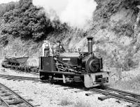0-4-0ST�Hunslet Quarry engine <i>Alan George</I> photographed in action on the Teifi Valley Railway on 28 August 1988.<br><br>[Peter Todd&nbsp;28/08/1988]