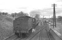 'Scottish Rambler no 2' stands at Nisbet on 14 April 1963 behind B1 4-6-0 no 61324. The B1 had taken over the special at Coldstream and had pulled up here for a photostop on the journey to Jedburgh. Nisbet had closed to passenger traffic along with the other stations on the Jedburgh branch in 1948 but freight continued to use the line between Roxburgh Junction and Jedburgh until 1966. [See image 19897]<br><br>[K A Gray&nbsp;14/04/1963]