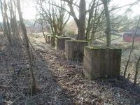 All that remains of the fairly substantial hospital railway station are the ten concrete blocks that used to support the platform, sidescreens and canopy and the crumbling brick base of the old waiting area. The blocks are seen here in March 2011 looking along the last bit of trackbed towards the yard, where the former engine shed still stands. The line closed completly in 1957.  The old station, yard and engine shed are all on private land - photograph taken with kind permission of NHS staff. Map Ref SD 571359. <br><br>[Mark Bartlett&nbsp;13/03/2011]