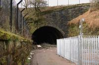 Lynedoch Street Tunnel North 22/03/2011