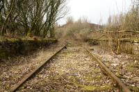 On the trackbed at Lynedoch Station, looking west in March 2011. The trackbed from here through to the Container Terminal was cleared a few years ago to allow maintenance teams to access the line to work on the tunnels on the route.<br><br>[Graham Morgan&nbsp;22/03/2011]