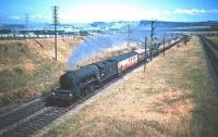 A3 Pacific no 60091 <I>Captain Cuttle</I> has just passed Monktonhall Junction in the summer of 1955 and is approaching the site of the 1988 Musselburgh station with an ECML service bound for Waverley. [Editors note: Michael Laing tells me that the second and probably third vehicles in this train are ex-GCR 'Barnum' open thirds, built in 1910 and seating 64 in two 4-bay open saloons. According to the GCR rolling stock trust website the last examples of these coaches were withdrawn in 1958.] <br> <br><br>[A Snapper (Courtesy Bruce McCartney)&nbsp;16/07/1955]