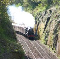 Less than 20 minutes out of Waverley in Sunday morning sunshine on 17 April 2011 the <I>Great Britain IV</I> rounds the curve from Morningside on the Edinburgh sub behind Royal Scot no 46115 <I>Scots Guardsman</I> heading for Inverness.<br><br>[John Furnevel&nbsp;17/04/2011]