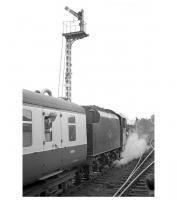 45562 <I>Alberta</I> about to leave Hexham on 3 June 1967 with the returning LCGB 'Thames - Tyne Limited'. The Jubilee will take the special as far as Newcastle Central where 4472 <I<>Flying Scotsman</I> will take over for the return to London. The distinctive old signal gantry at the east end of Hexham station which appears in many photographs from the steam era has since been replaced by cls [see image 29918] <br><br>[K A Gray&nbsp;03/06/1967]