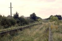 The view north through the former Drayton station on 13th October 1979, a few months after demolition of the station building and removal of the road overbridge. All the fabric of the station had been carted away, save for the roof trusses and the ticket hatch and frame which had been left lying at the roadside.<br><br>[Mark Dufton&nbsp;13/10/1979]