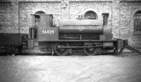 Drummond ex-Caledonian 0-4-0ST 'Pug' no 56029, complete with dumb buffers and wooden tender, stands alongside Dawsholm shed in March 1959. Built at St Rollox works in 1895 the locomotive was later transferred to Kipps shed, from where official withdrawal took place at the end of 1962 [see image 22947]. 56029 was finally cut up at MMS Wishaw in August 1964.    <br><br>[Robin Barbour Collection (Courtesy Bruce McCartney)&nbsp;23/03/1959]