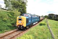 Sparkling Deltic no 55 022 <I>Royal Scots Grey</I> climbs the 1 in 50 gradient between Fodderty Junction and Achterneed on 28 May hauling the SRPS <I>Kyle Crusader</I> railtour to Kyle of Lochalsh.<br><br>[John Gray&nbsp;28/05/2011]