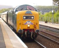The North Berwick - Kyle of Lochalsh SRPS <I>Kyle Crusader</I> excursion, hauled by Deltic 55022 <I>Royal Scots Grey</I>, runs through Carrbridge on 28 May 2011.<br><br>[Gus Carnegie 28/05/2011]