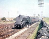 A4 Pacific no 60012 <I>Commonwealth of Australia</I> westbound through Saughton Junction at speed on 31 July 1959. The usual suspects observe the proceedings from the wall on the right.<br><br>[A Snapper (Courtesy Bruce McCartney)&nbsp;31/07/1959]