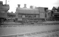 Peckett 0-4-0ST no 1143 stands in the shed yard at Danygraig (87C) on 28 June 1959. The locomotive was acquired by the Great Western Railway from the Swansea Harbour Trust (originally their no 12) in 1923.<br><br>[Robin Barbour Collection (Courtesy Bruce McCartney)&nbsp;28/06/1959]