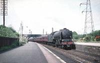 A2 Pacific no 60534 <I>Irish Elegance</I> brings a southbound train through Joppa in August 1959.<br><br>[A Snapper (Courtesy Bruce McCartney)&nbsp;08/08/1959]