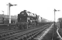 The RCTS (Lancashire & North West Branch) <I>Rebuilt Scot Commemorative Rail Tour</I> on a photostop at Hellifield on 13 February 1965. The locomotive in charge is no 46115 <I>'Scots Guardsman'</I>. [The stop at Hellifield included a visit to the shed to view some of the National Collection, during which time the train was put into the Down Loop.] [See image 23520]<br><br>[K A Gray&nbsp;13/02/1965]
