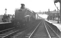 A4 at Auchinleck. 60004 <I>William Whitelaw</I> stands at Auchinleck on 30 June 1963 with the RCTS <I>'Three Summit Rail Tour'</I>. The A4 had taken over from 103+57581 [see image 34245] and was about to take the special south as far as Carlisle. <br><br>[K A Gray&nbsp;30/06/1963]