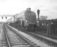 A4 Pacific no 4498 <I>Sir Nigel Gresley</I> stands alongside Carlisle Kingmoor shed on 28 October 1967 with the RCTS (E Midlands, Lancs and North West branches) special <I>'The Border Limited'</I> on its way back to Nottingham.<br><br>[Robin Barbour Collection (Courtesy Bruce McCartney)&nbsp;28/10/1967]