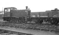D2104 shunting the sidings at Tweedmouth on the morning of 27 May 1967.<br><br>[Bill Jamieson&nbsp;27/05/1967]