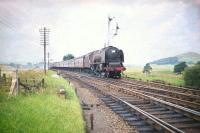 Stanier Pacific no 46243 <I>City of Lancaster</I>, in Crimson Lake livery, about to run through Symington at speed on the first day of August 1959 with the up Glasgow Central - London Euston 'Mid-day Scot'.<br><br>[A Snapper (Courtesy Bruce McCartney)&nbsp;01/08/1959]