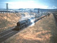A3 Pacific no 60096 <I>Papyrus</I> approaching Musselburgh with a down ECML Waverley-bound train in July 1955. On the right are the freight lines climbing from Monktonhll Junction heading for Niddrie West.<br><br>[A Snapper (Courtesy Bruce McCartney)&nbsp;16/07/1955]