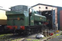 Pannier tank no 3650 being prepared for a day's work at Hayes Knoll depot on the Swindon and Cricklade Railway on 24 July 2011. The locomotive is currently on loan from the Great Western Society at Didcot.<br> <br><br>[Peter Todd&nbsp;24/07/2011]