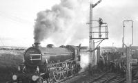61278 takes water during a stop at Westcraigs on 3 December 1966 with the BR Scottish Region 'Last B1 Excursion'.<br><br>[K A Gray&nbsp;03/12/1966]