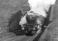 A1 Pacific No. 4475 <I>Flying Fox</I> bursts out of Penmanshiel Tunnel with 'The Flying Scotsman' in 1931. The photographer was 14 years old when he captured this scene.<br><br>[Frank Spaven Collection (Courtesy David Spaven)&nbsp;//1931]