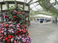 Colourful scene on the concourse at Wemyss Bay on 11 August 2011. Tiered planter courtesy of the 'Friends of Wemyss Bay Station'.<br><br>[John Yellowlees&nbsp;11/08/2011]