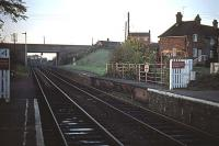 The northern end of Halesworth station in November 1976. Before the road bridge in the background was built in the 1960s, the platforms were combined with a level crossing, so that the platforms could swing for the passage of road traffic. The once movable sections are visible here, falling into disrepair. Subsequently, these sections were restored in situ as a static heritage exhibit. The disused platforms beyond these sections were cut back soon after this photograph was taken.<br><br>[Mark Dufton&nbsp;07/11/1976]