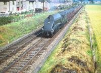 Shortly after turning north at Saughton Junction in July 1959, A4 no 60024 <I>Kingfisher</I> runs parallel with the houses of Broombank Terrace as it makes its way towards the Forth Bridge with a train for Aberdeen.<br><br>[A Snapper (Courtesy Bruce McCartney)&nbsp;25/07/1959]