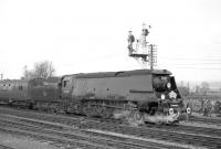 Bulleid 'Battle of Britain' Pacific no 34057 <I>Biggin Hill</I> photographed during a photostop at Romsey with the LCGB <I>Hampshire Branch Lines Rail Tour</I> on 9 April 1967. The locomotive had taken charge at Salisbury and took the special forward as far as Southampton Central.<br><br>[Robin Barbour Collection (Courtesy Bruce McCartney)&nbsp;//]