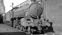 B1 61010 <I>'Wildebeeste'</I> on shed at Aintree on 14 April 1962. <br><br>[K A Gray&nbsp;14/04/1962]