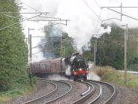 Black 5 45231 makes a spirited assault on the bank south of Lancaster with the final 2011 <I>Fellsman</I>. Four different steam locomotives have been used on the nine fully booked trains this year - 46115 (2), 44932 (1), 48151 (4) and finally 45231 (2). Roll on 2012!<br><br>[Mark Bartlett&nbsp;14/09/2011]