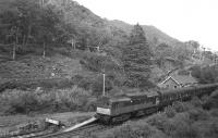 Unusual motive power for a westbound Fort William-Mallaig train at Beasdale in Summer 1966 - a two-tone green BR 'Derby' Type 2 (later Class 25) hauling maroon-liveried stock.<br> <br><br>[David Spaven //1966]
