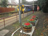The attractive planters at Crookston (courtesy of the Friends of Rosshall Park and Gardens) add to the pleasant autumn scene on 30 September 2011. In the background a service on the Paisley Canal line is arriving from Glasgow Central, while beyond the fence on the disused platform stands the original 1885 station building, sensitively restored following serious fire damage in the 1980s. [See image 15060]<br><br>[John Yellowlees 30/09/2011]