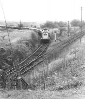 View north east from the A73 road bridge south of Newmains in May 1971 as a Clayton brings a lengthy freight out of the Costain cement works to join the former Wishaw and Coltness line at Stirling Road Junction. The train will join the WCML a mile further west at Garriongill Junction.<br> <br><br>[John Furnevel&nbsp;03/05/1971]